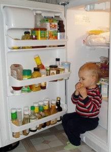 l-fridge