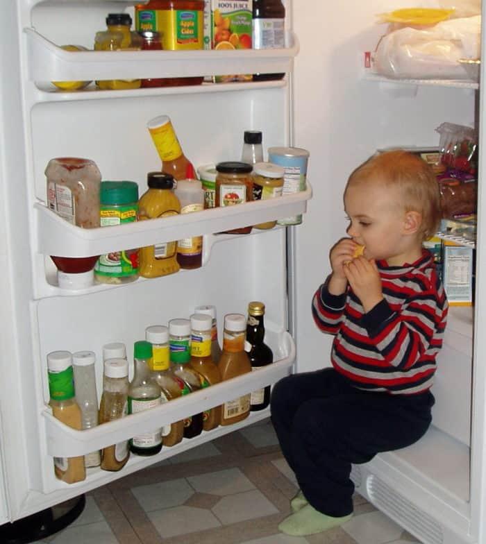 Our Kinder, Vegetarian Diet: Week 1