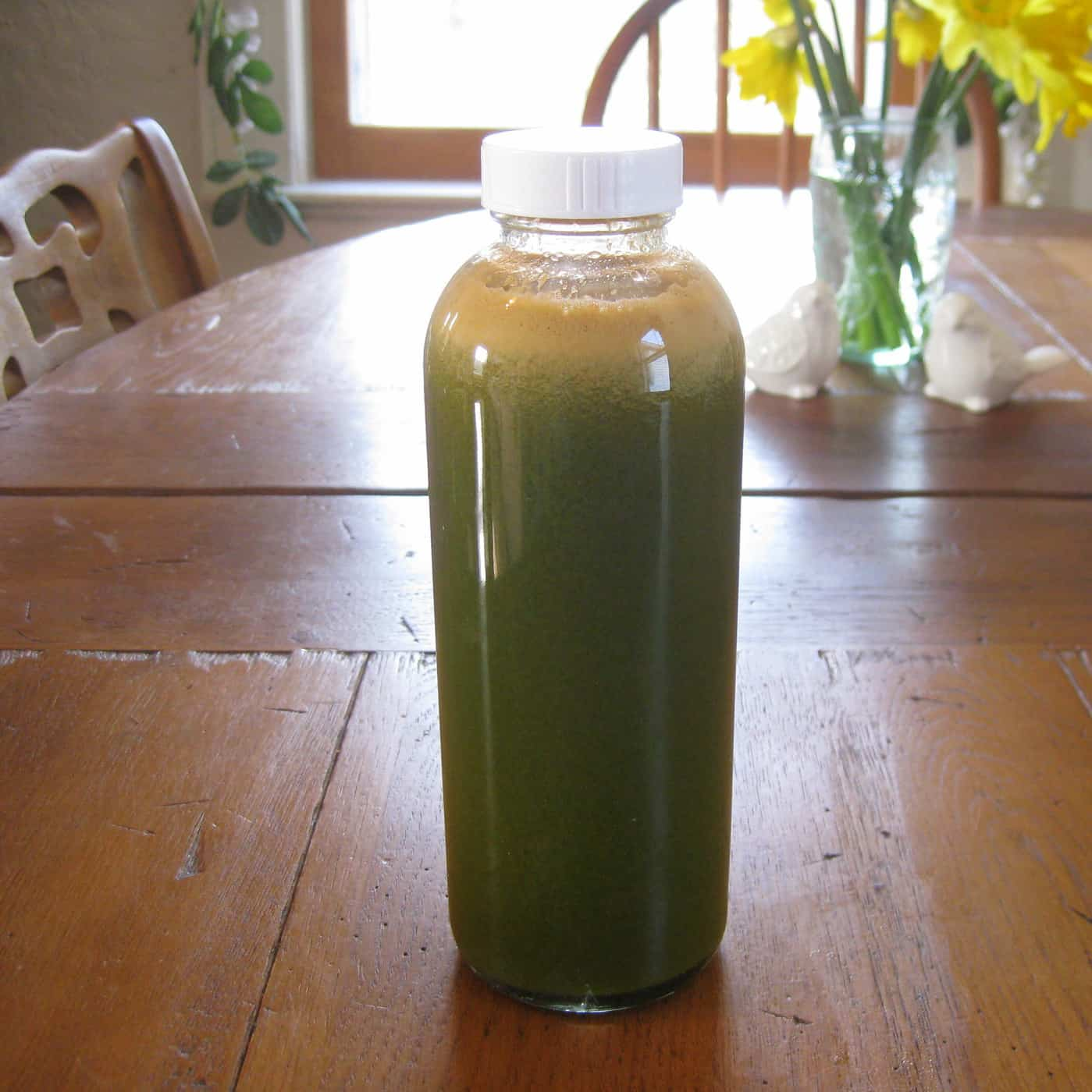 Info on Top Vegetarian Mom and Our Extreme Juice Fast