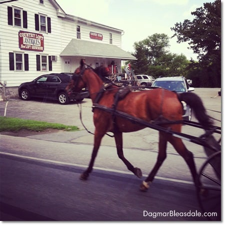 horse pulling buggy in Amish Country, Pennsylvania