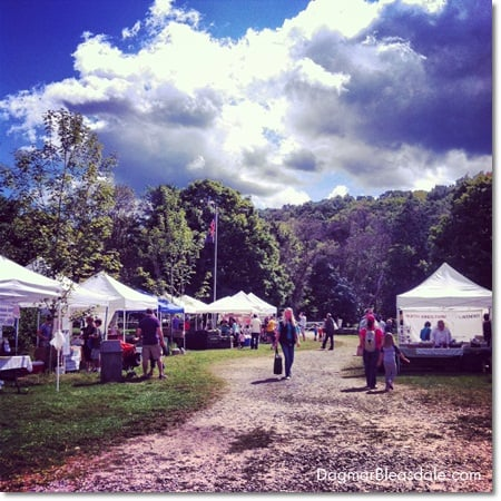 farmers market at Muscoot Farm in Katonah, NY