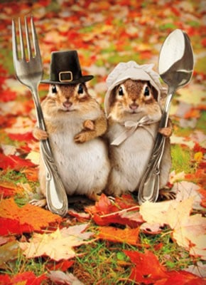 pilgrim chipmunks with silverware, fun fall decorations