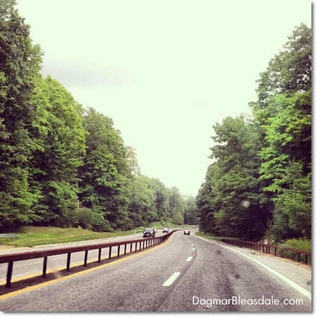 road trip in Westchester, NY, Taconic