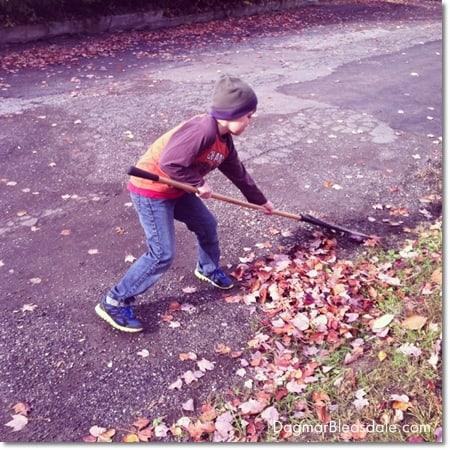 boy raking fall leaves