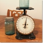 Wordless Wednesday Linky: My Latest Thrifty Find