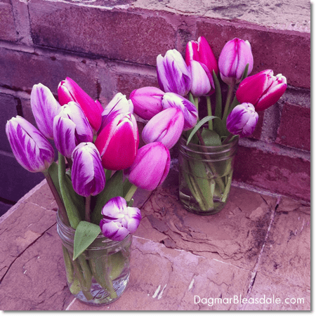 tulips in mason jars