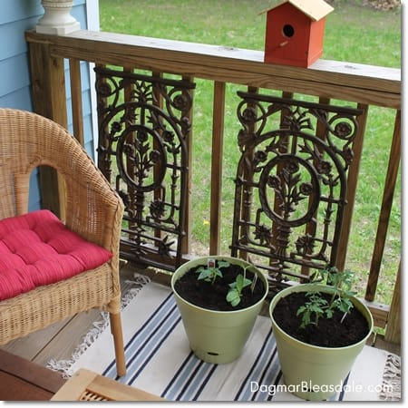 organic container gardenin on porch