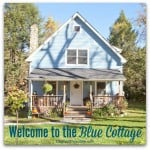 Blue Cottage Decor: Our Porch and Yard