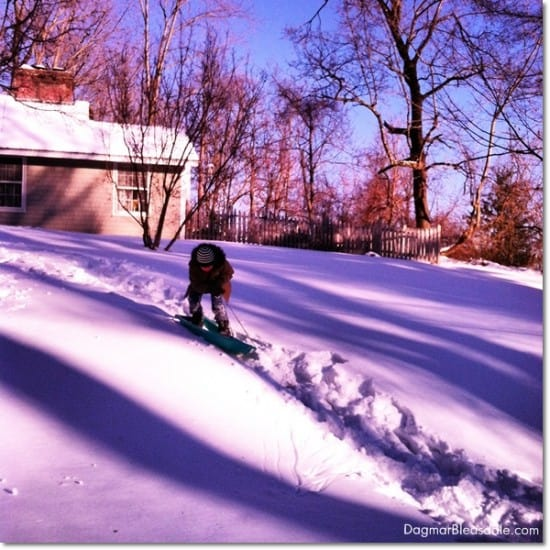 boy standing on sled