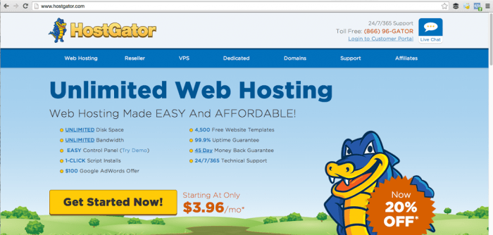 starting a blog with HostGator, DagmarBleasdale.com
