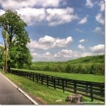 take the scenic road today, DagmarBleasdale.com