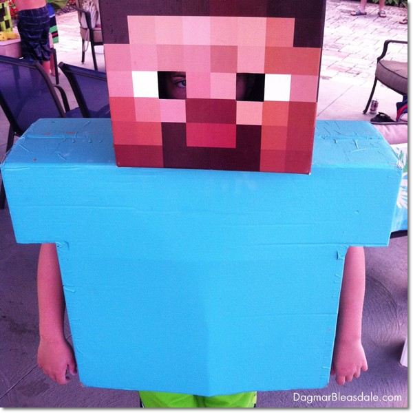 DIY Minecraft birthday party, DagmarBleasdale.com