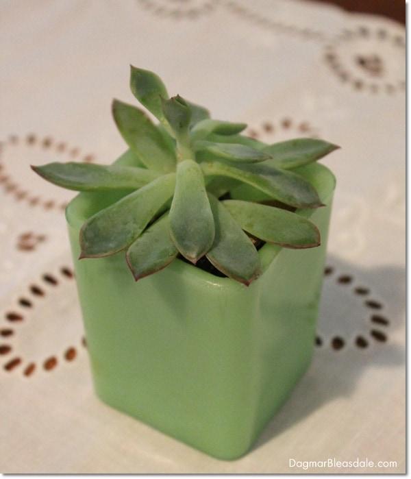 jadeite box