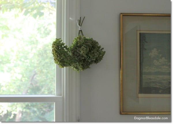 How to Dry Hydrangeas, DagmarBleasdale.com