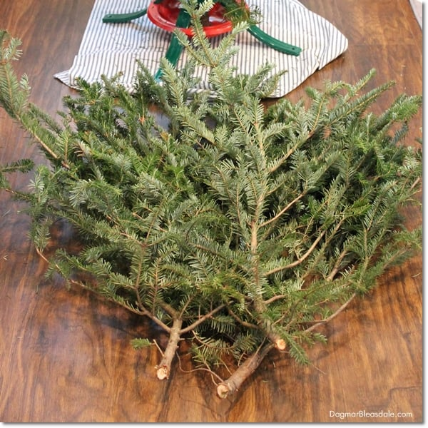 How to make a christmas tree look fuller and taller on a budget - Make christmas tree last longer ...